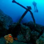 Dive Madeira