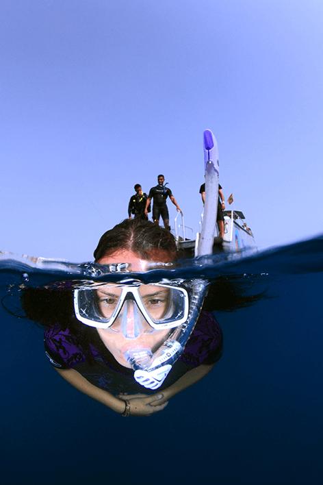 Schnorcheln mit Delphinen